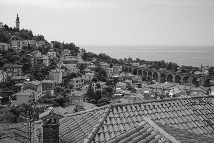 Trieste, 2020